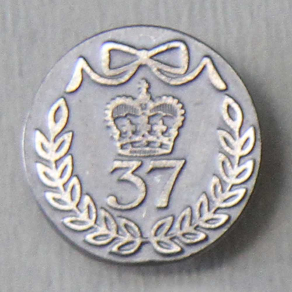 37th (North Hampshire) Regiment of Foot